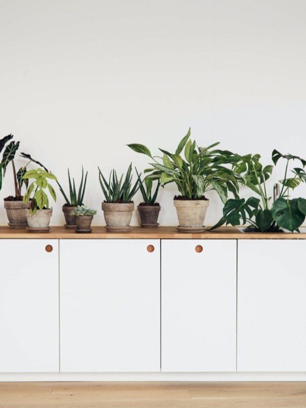 https://cdn-www.reformcph.com/BASIS painted kitchen fronts